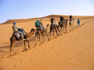 best camel tours